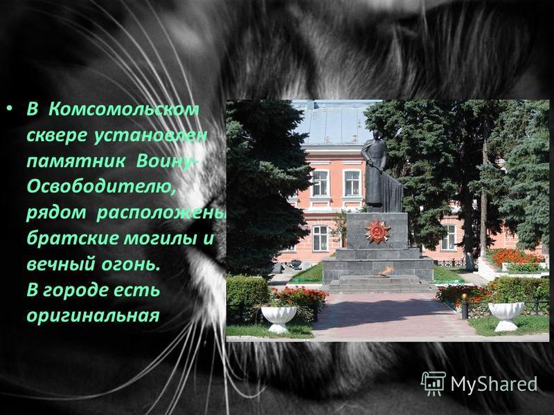 В Комсомольском сквере установлен памятник Воину- Освободителю, рядом расположены братские могилы и вечный огонь. В городе есть оригинальная
