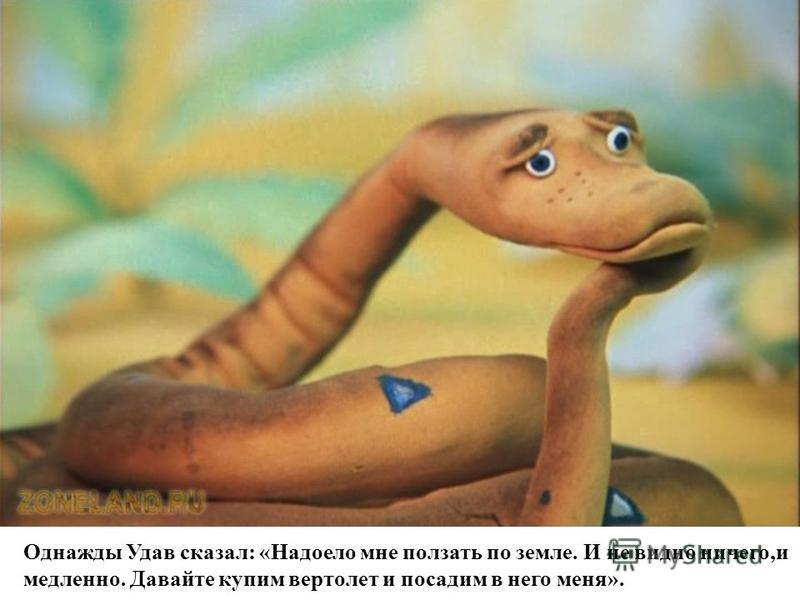 Однажды Удав сказал: «Надоело мне ползать по земле. И не видно ничего,и медленно. Давайте купим вертолет и посадим в него меня».