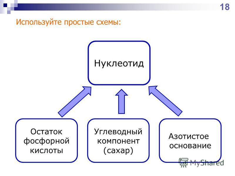 Нуклеотид Остаток фосфорной кислоты Углеводный компонент (сахар) Азотистое основание Используйте простые схемы: 18