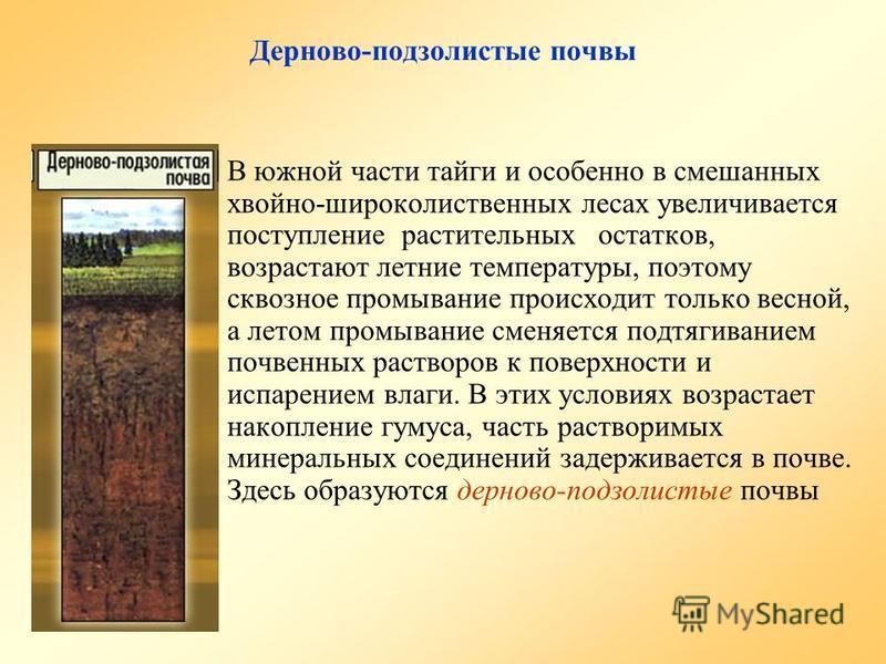 Дерново-подзолистые почвы В южной части тайги и особенно в смешанных хвойно-широколиственных лесах увеличивается поступление растительных остатков, возрастают летние температуры, поэтому сквозное промывание происходит только весной, а летом промывани