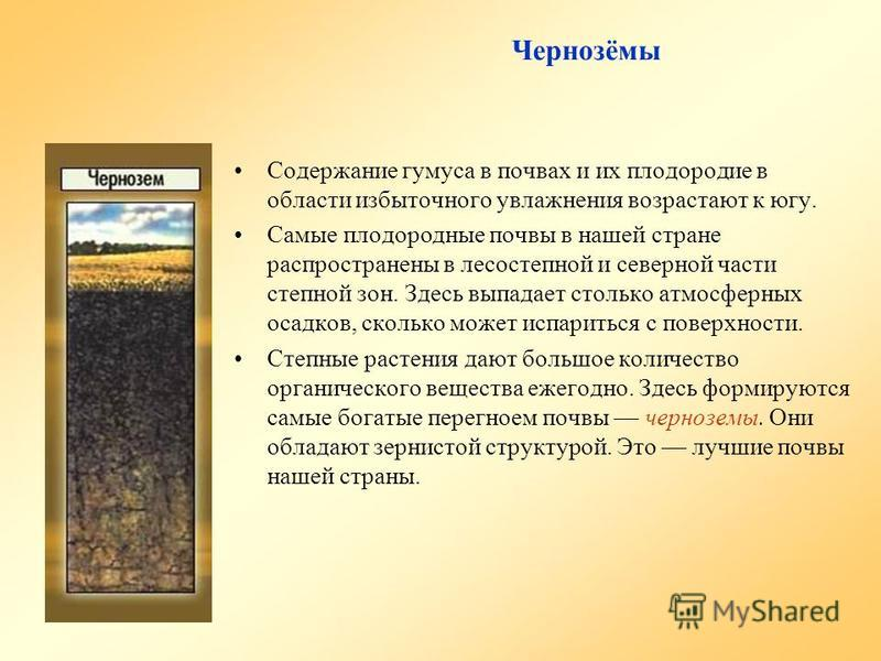 Чернозёмы Содержание гумуса в почвах и их плодородие в области избыточного увлажнения возрастают к югу. Самые плодородные почвы в нашей стране распространены в лесостепной и северной части степной зон. Здесь выпадает столько атмосферных осадков, скол