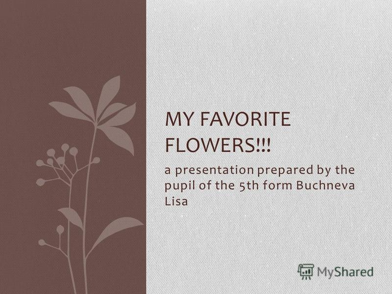 a presentation prepared by the pupil of the 5th form Buchneva Lisa MY FAVORITE FLOWERS!!!