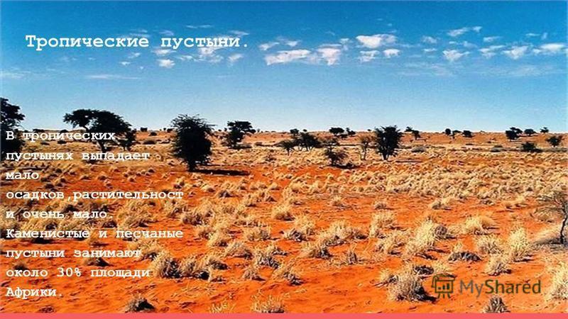Тропические пустыни. В тропических пустынях выпадает мало осадков,растительность и очень мало. Каменистые и песчаные пустыни занимают около 30% площади Африки.
