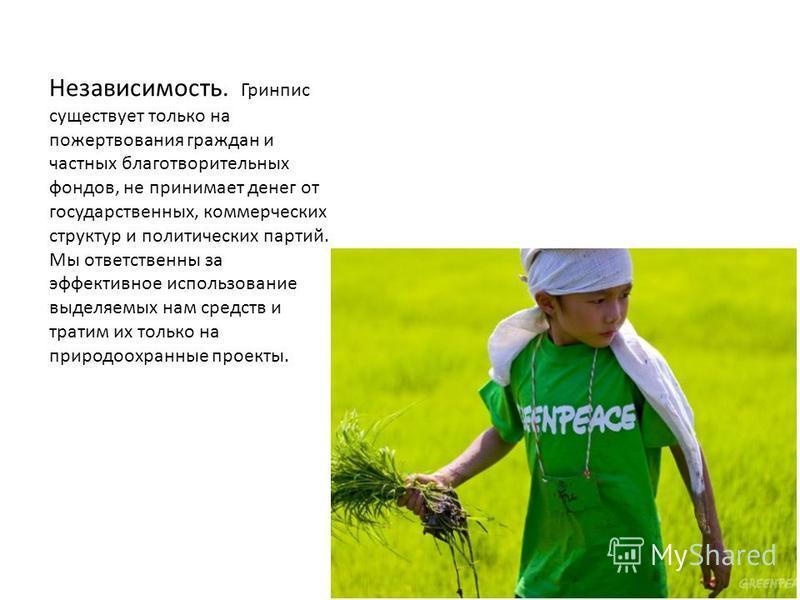 НАША МИССИЯ И ПРИНЦИПЫ Гринпис это независимая международная организация, которой сохранить природу и мир на планете. Для этого мы изменяем отношение людей к природным богатствам Земли. Гринпис это независимая международная организация, цель которой
