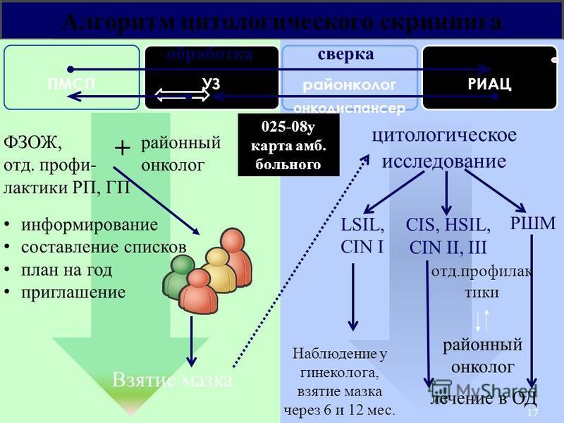 Алгоритм цитологического скрининга Наблюдение у гинеколога, взятие мазка через 6 и 12 мес. Взятие мазка цитологическое исследование LSIL, CIN I CIS, HSIL, CIN II, III 17 лечение в ОД районный онколог РШМ районный онколог + отд.профилактики ПМСПУЗ рай