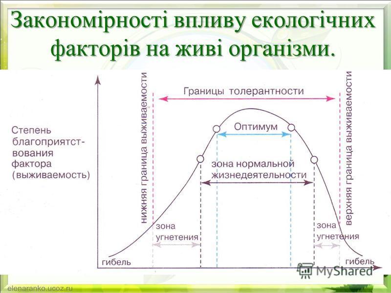 Закономірності впливу екологічних факторів на живі організми.