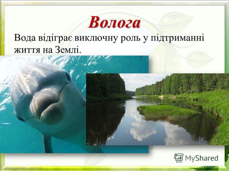 Волога Вода відіграє виключну роль у підтриманні життя на Землі.