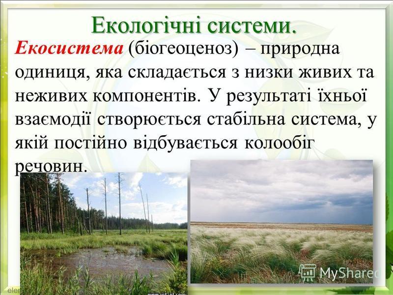 Екологічні системи. Екосистема (біогеоценоз) – природна одиниця, яка складається з низки живих та неживих компонентів. У результаті їхньої взаємодії створюється стабільна система, у якій постійно відбувається колообіг речовин.