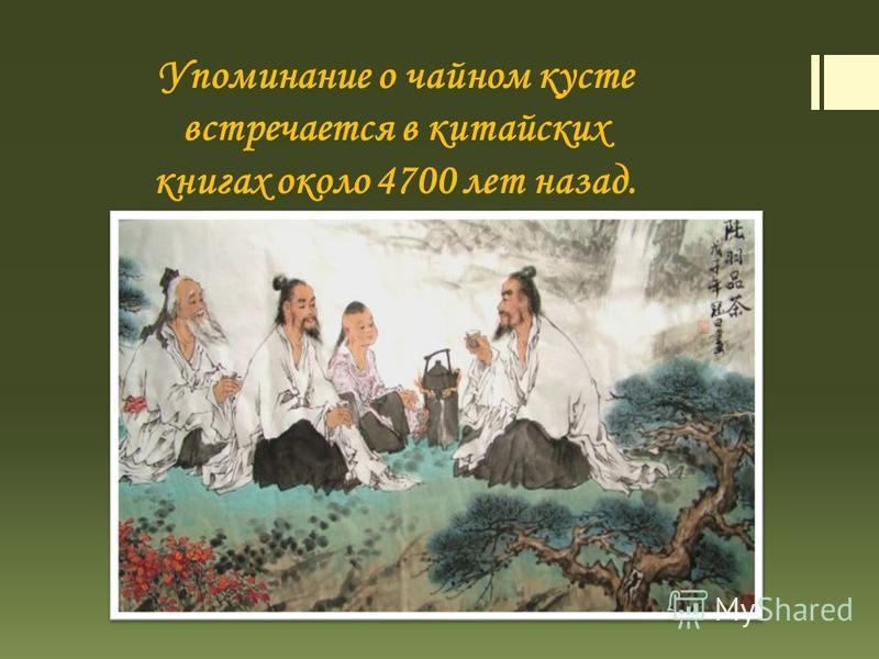 Упоминание о чайном кусте встречается в китайских книгах около 4700 лет назад.