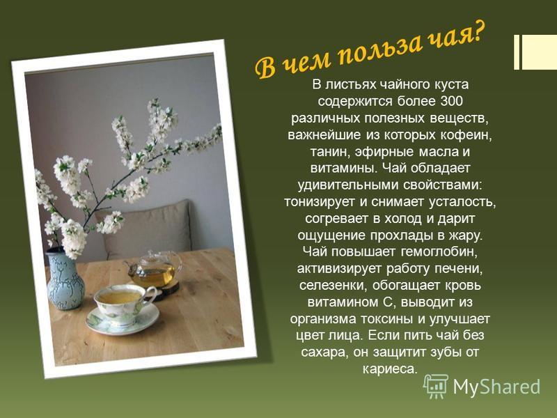 В чем польза чая? В листьях чайного куста содержится более 300 различных полезных веществ, важнейшие из которых кофеин, танин, эфирные масла и витамины. Чай обладает удивительными свойствами: тонизирует и снимает усталость, согревает в холод и дарит
