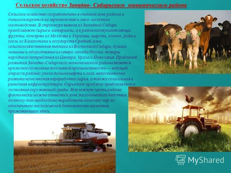Сельское хозяйство сосредоточено в степной зоне района и специализируется на зерноводстве и мясо - молочном скотоводстве. В структуре вывоза из Западной Сибири преобладают сырье и материалы, а в район поступают овощи, фрукты, консервы из Молдовы и Ук