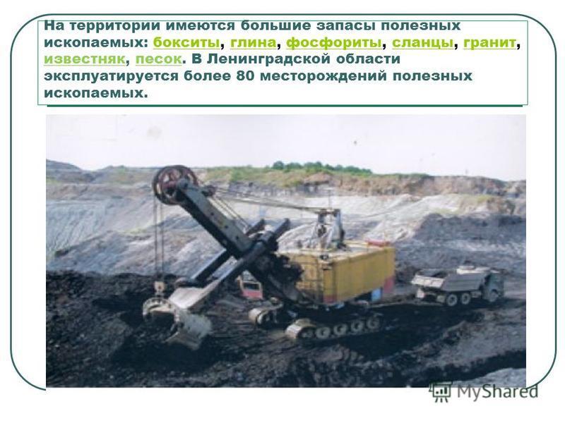 На территории имеются большие запасы полезных ископаемых: бокситы, глина, фосфориты, сланцы, гранит, известняк, песок. В Ленинградской области эксплуатируется более 80 месторождений полезных ископаемых.бокситыглинафосфоритысланцыгранит