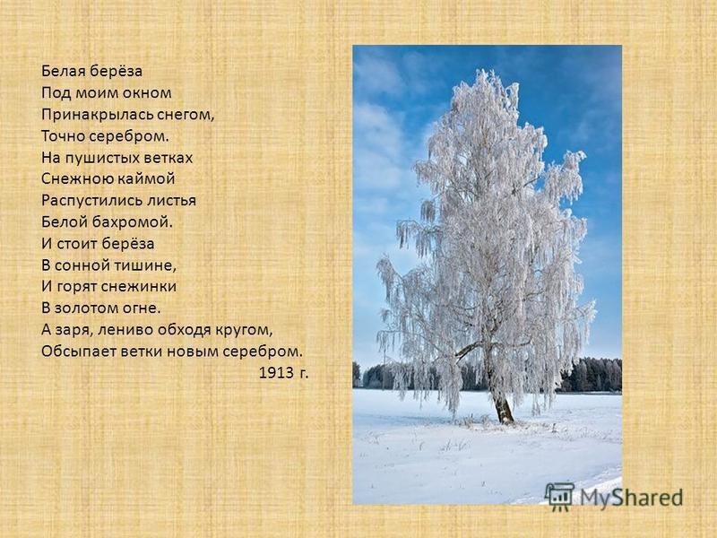 Белая берёза Под моим окном Принакрылась снегом, Точно серебром. На пушистых ветках Снежною каймой Распустились листья Белой бахромой. И стоит берёза В сонной тишине, И горят снежинки В золотом огне. А заря, лениво обходя кругом, Обсыпает ветки новым