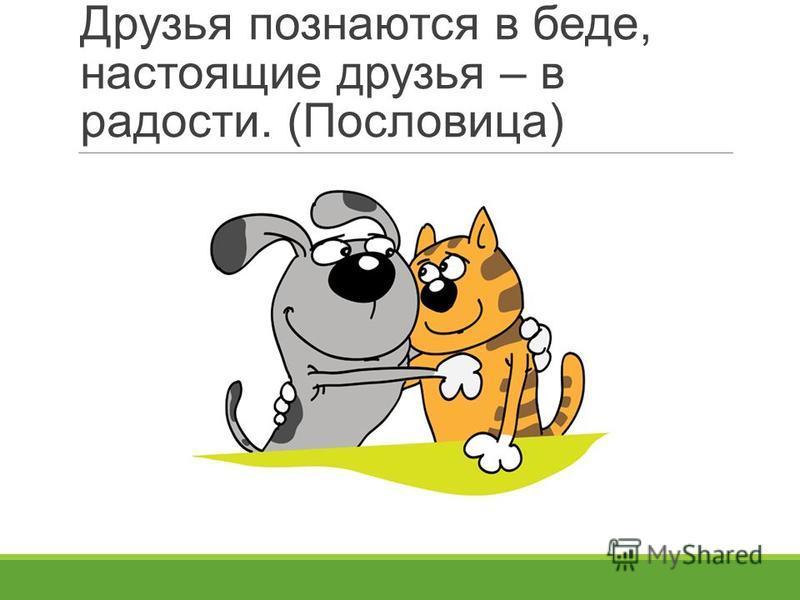 Друзья познаются в беде, настоящие друзья – в радости. (Пословица)