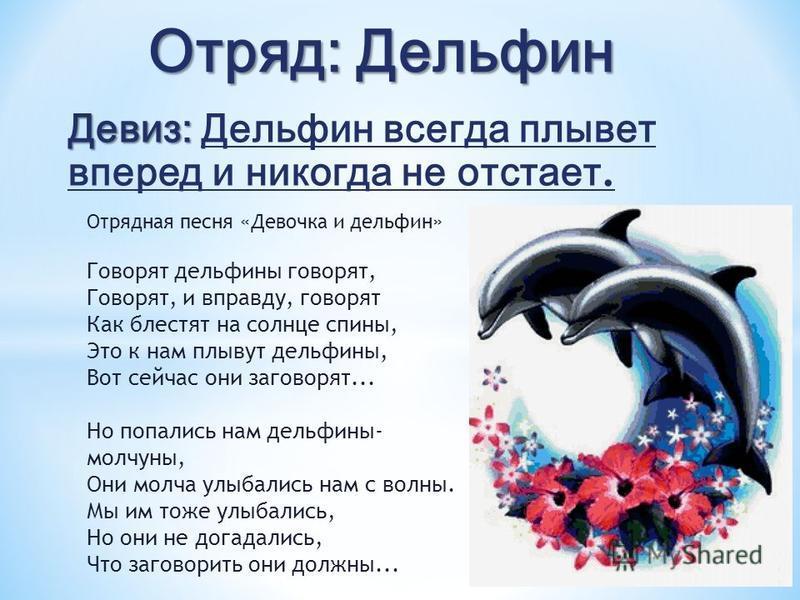 Девиз: Девиз: Дельфин всегда плывет вперед и никогда не отстает. Отрядная песня «Девочка и дельфин» Говорят дельфины говорят, Говорят, и вправду, говорят Как блестят на солнце спины, Это к нам плывут дельфины, Вот сейчас они заговорят... Но попались