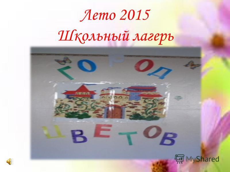 Лето 2015 Школьный лагерь