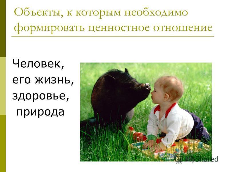 Объекты, к которым необходимо формировать ценностное отношение Человек, его жизнь, здоровье, природа
