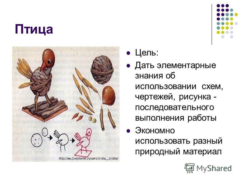 Птица Цель: Дать элементарные знания об использовании схем, чертежей, рисунка - последовательного выполнения работы Экономно использовать разный природный материал