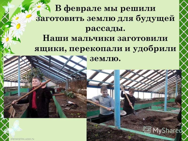 В феврале мы решили заготовить землю для будущей рассады. Наши мальчики заготовили ящики, перекопали и удобрили землю.