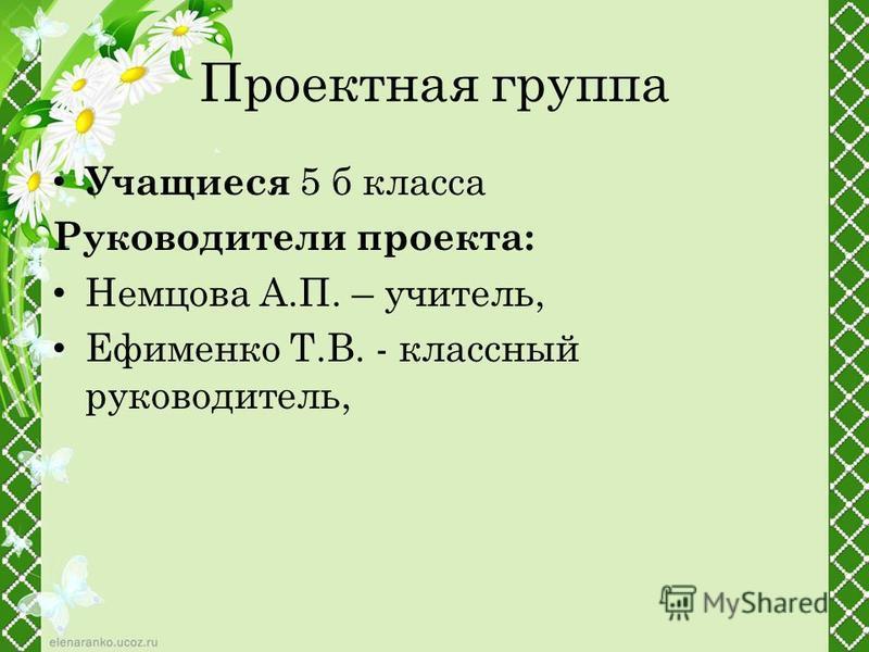 Проектная группа Учащиеся 5 б класса Руководители проекта: Немцова А.П. – учитель, Ефименко Т.В. - классный руководитель,