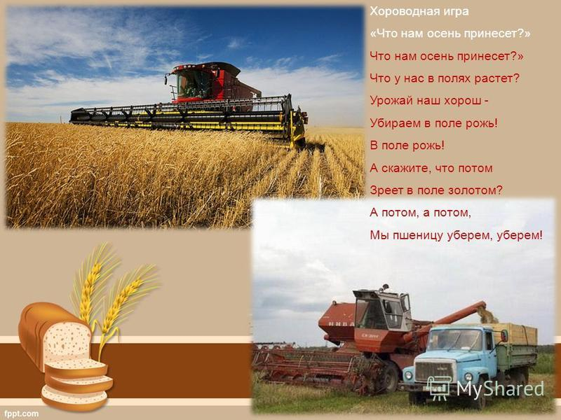 Хороводная игра «Что нам осень принесет?» Что нам осень принесет?» Что у нас в полях растет? Урожай наш хорош - Убираем в поле рожь! В поле рожь! А скажите, что потом Зреет в поле золотом? А потом, а потом, Мы пшеницу уберем, уберем!
