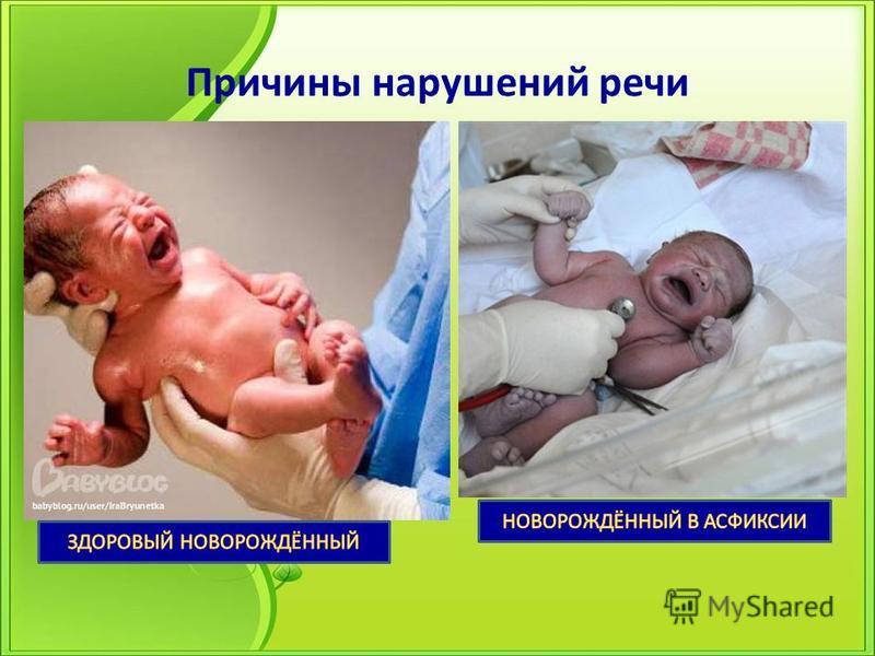 Этапы беременности от 1 до 40 недель