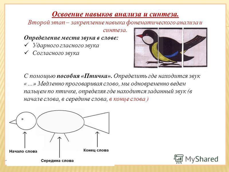 Освоение навыков анализа и синтеза. Второй этап – закрепление навыка фонематического анализа и синтеза. Определение места звука в слове: Ударного гласного звука Согласного звука С помощью пособия «Птичка». Определить где находится звук «…» Медленно п