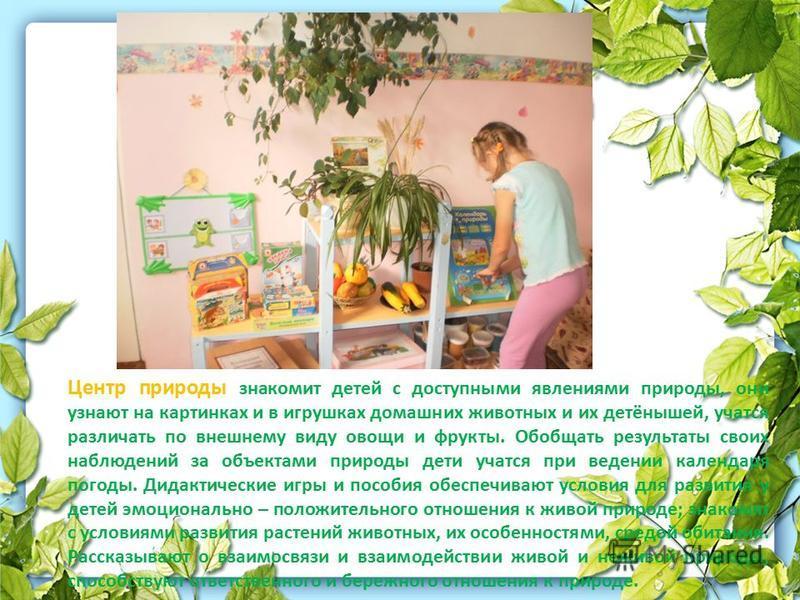 Центр природы знакомит детей с доступными явлениями природы, они узнают на картинках и в игрушках домашних животных и их детёнышей, учатся различать по внешнему виду овощи и фрукты. Обобщать результаты своих наблюдений за объектами природы дети учатс
