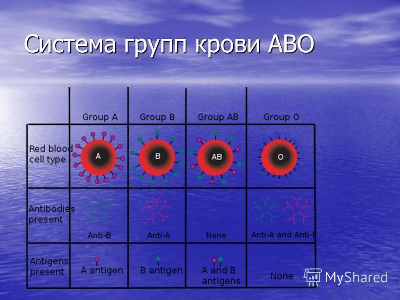 Система групп крови АВО