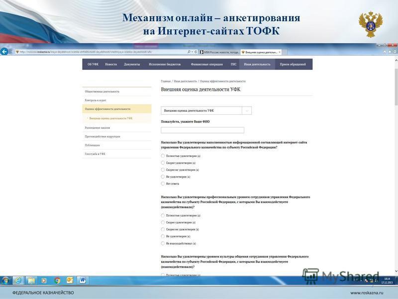 7 Механизм онлайн – анкетирования на Интернет-сайтах ТОФК