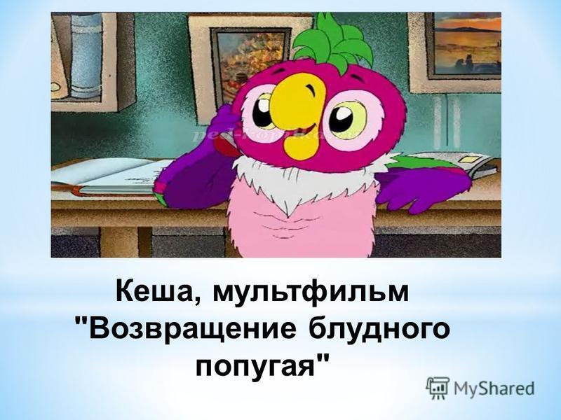 Кеша, мультфильм Возвращение блудного попугая