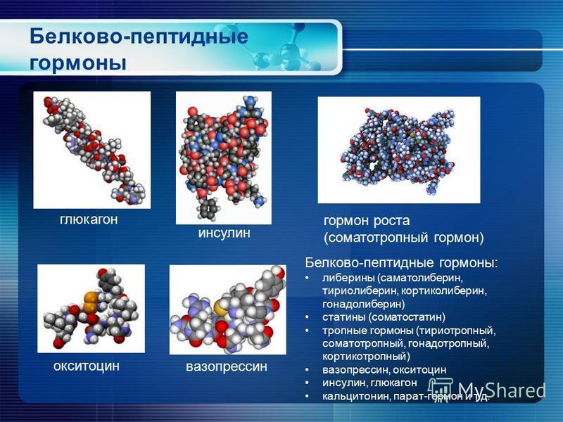 Белково-пептидные гормоны глюкагон инсулин гормон роста (соматотропный гормон) окситоцин вазопрессин Белково-пептидные гормоны: либерины (соматолиберин, тириолиберин, кортиколиберин, гонадолиберин) статины (соматостатин) тропные гормоны (тиреотропный