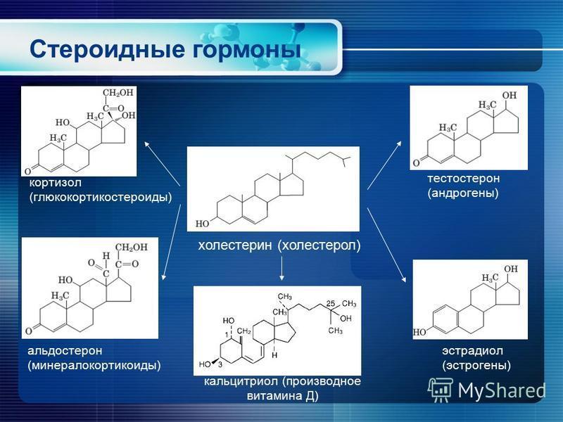 Стероидные гормоны холестерин (холесторел) эстрадиол (эстрогены) альдостерон (минералокортикоиды) тестостерон (андрогены) кортизол (глюкокортикостероиды) кальцитриол (производное витамина Д)