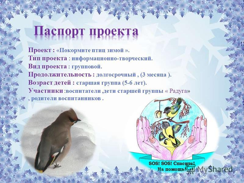 Проект : «Покормите птиц зимой ». Тип проекта : информационно-творческий. Вид проекта : групповой. Продолжительность : долгосрочный, (3 месяца ). Возраст детей : старшая группа (5-6 лет). Участники :воспитатели,дети старшей группы « Радуга», родители