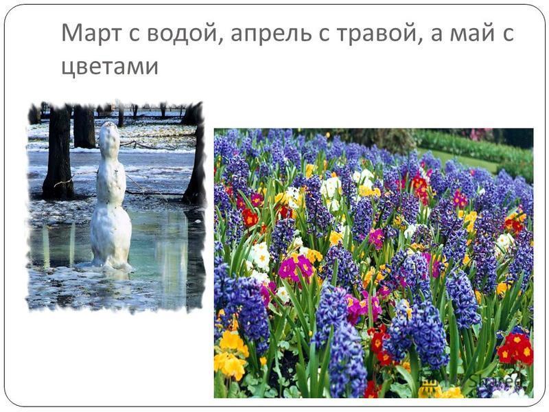 Март с водой, апрель с травой, а май с цветами