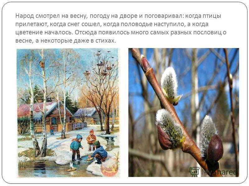 Народ смотрел на весну, погоду на дворе и поговаривал : когда птицы прилетают, когда снег сошел, когда половодье наступило, а когда цветение началось. Отсюда появилось много самых разных пословиц о весне, а некоторые даже в стихах.