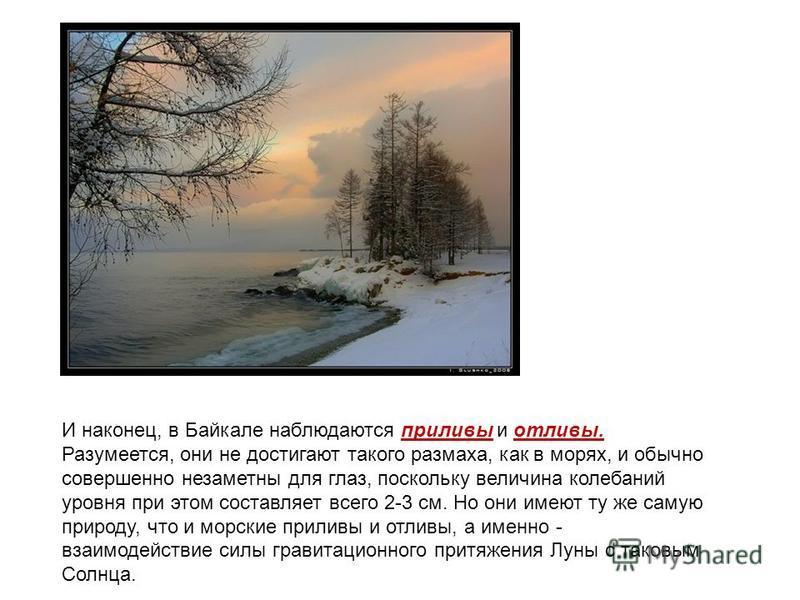 И наконец, в Байкале наблюдаются приливы и отливы. Разумеется, они не достигают такого размаха, как в морях, и обычно совершенно незаметны для глаз, поскольку величина колебаний уровня при этом составляет всего 2-3 см. Но они имеют ту же самую природ