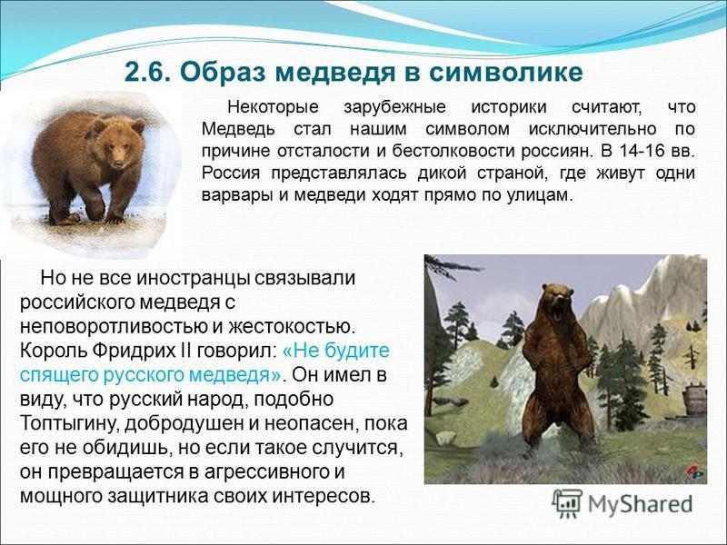 2.6. Образ медведя в символике Некоторые зарубежные историки считают, что Медведь стал нашим символом исключительно по причине отсталости и бестолковости россиян. В 14-16 вв. Россия представлялась дикой страной, где живут одни варвары и медведи ходят