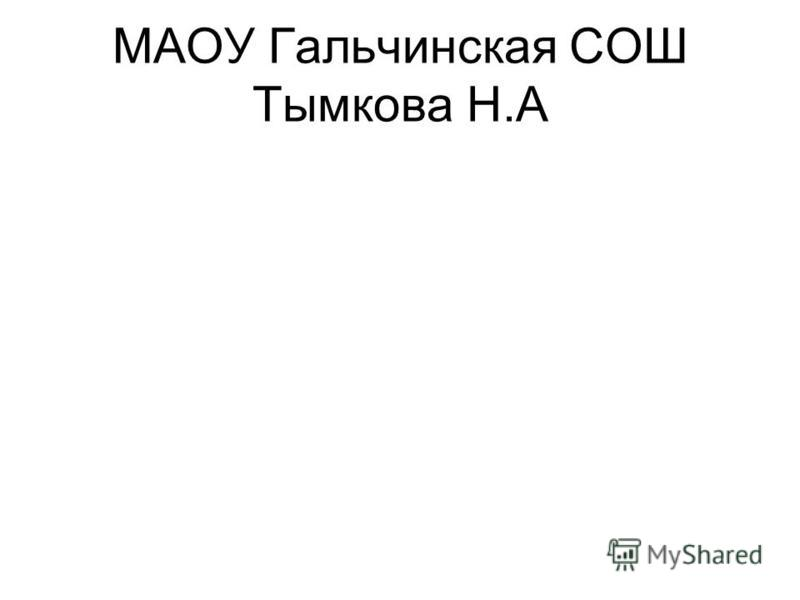 МАОУ Гальчинская СОШ Тымкова Н.А