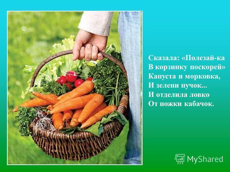 Сказала: «Полезай-ка В корзинку поскорей» Капуста и морковка, И зелени пучок... И отделила ловко От ножки кабачок.