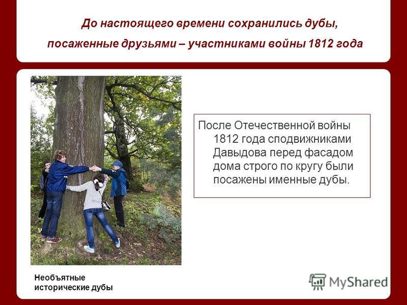До настоящего времени сохранились дубы, посаженные друзьями – участниками войны 1812 года После Отечественной войны 1812 года сподвижниками Давыдова перед фасадом дома строго по кругу были посажены именные дубы. Необъятные исторические дубы