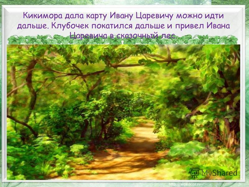 13 Кикимора дала карту Ивану Царевичу можно идти дальше. Клубочек покатился дальше и привел Ивана Царевича в сказочный лес.