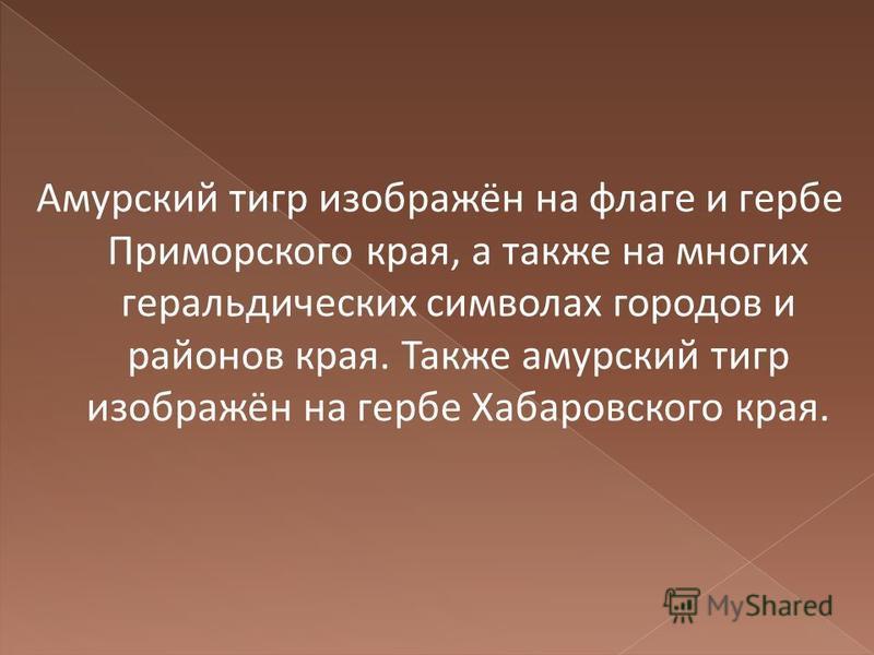 Амурусский тигр изображён на флаге и гербе Приморского края, а также на многих геральдических символах городов и районов края. Также амурусский тигр изображён на гербе Хабаровского края.