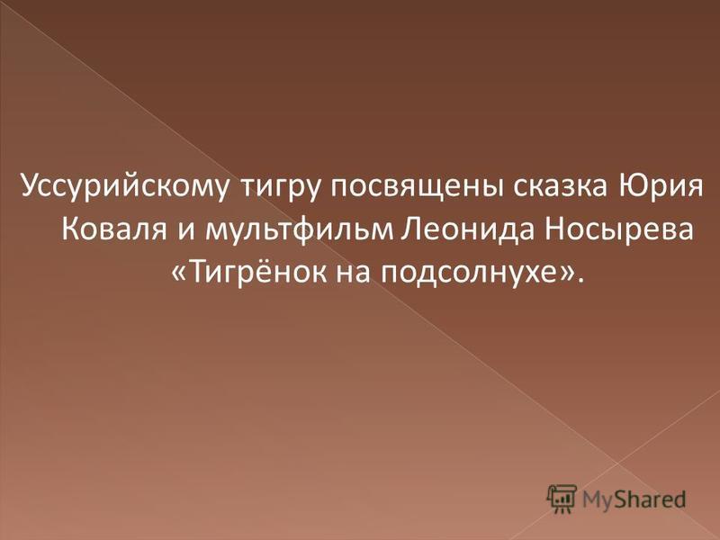 Уссурийскому тигру посвящены сказка Юрия Коваля и мультфильм Леонида Носырева «Тигрёнок на подсолнухе».