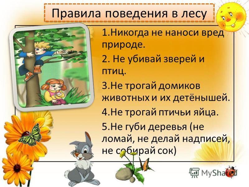 Правила поведения в лесу 1. Никогда не наноси вред природе. 2. Не убивай зверей и птиц. 3. Не трогай домиков животных и их детёнышей. 4. Не трогай птичьи яйца. 5. Не губи деревья (не ломай, не делай надписей, не собирай сок)