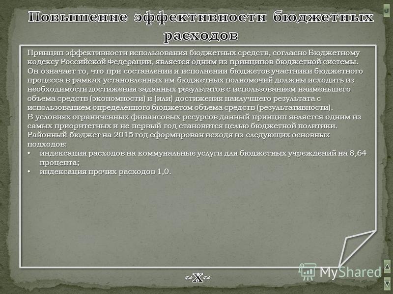 Принцип эффективности использования бюджетных средств, согласно Бюджетному кодексу Российской Федерации, является одним из принципов бюджетной системы. Он означает то, что при составлении и исполнении бюджетов участники бюджетного процесса в рамках у