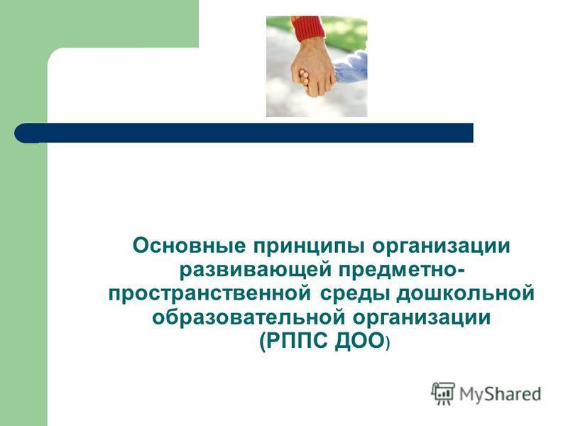 Основные принципы организации развивающей предметно- пространственной среды дошкольной образовательной организации (РППС ДОО )