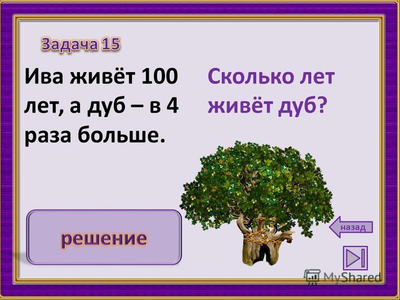 Сколько лет живёт дуб? Ива живёт 100 лет, а дуб – в 4 раза больше. назад