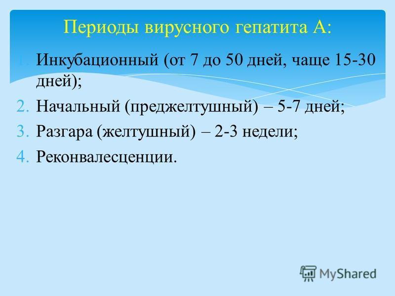 1. Инкубационный (от 7 до 50 дней, чаще 15-30 дней); 2. Начальный (преджелтушный) – 5-7 дней; 3. Разгара (желтушный) – 2-3 недели; 4.Реконвалесценции. Периоды вирусного гепатита А: