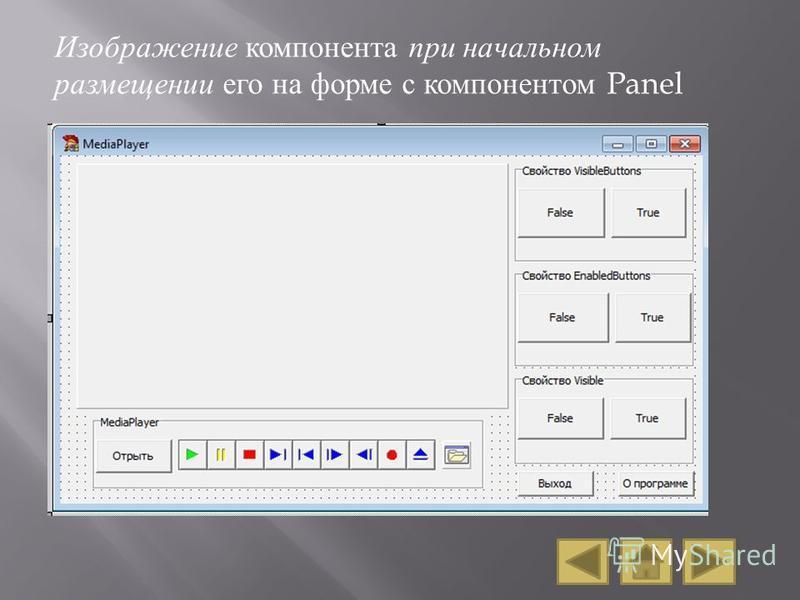 Изображение компонента при начальном размещении его на форме с компонентом Panel